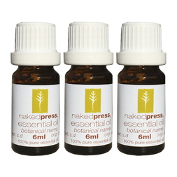 5ML x 3 (VALUE PACK) - GERANIUM OIL (EGYPT) - 100% PURE ESSENTIAL OIL (STEAM DISTILLED) - AROMATHERAPY GRADE - (PELARGONIUM GRAVEOLENS)